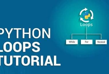 How to Construct While Loops In Python